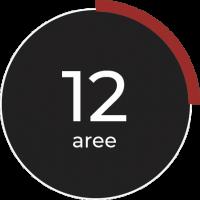 12 aree